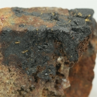 Gold With Uraninite