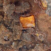 Vanadinite Var Endlichite & Wulfenite