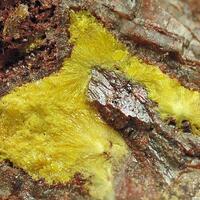 Uranophane On Baryte