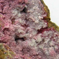Weilite & Picropharmacolite