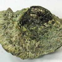 Anthophyllite & Phlogopite