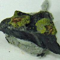 Bassetite
