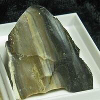 Opal In Obsidian