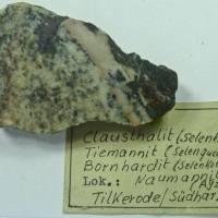 Clausthalite Tiemannite Bornhardtite & Naumannite