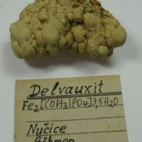 Delvauxite