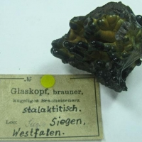 Limonite Var Glaskopf