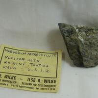 Magnesioastrophyllite