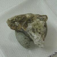 Manganoan Pectolite