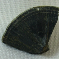 Ozocerite Var Boryslavite