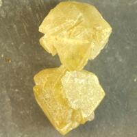 Microlite