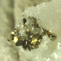 Molybdenite & Pyrite