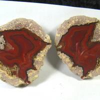 Tin Can Hill Minerals: 04 Jun - 09 Jun 2018