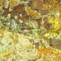 Kidwellite & Strengite & Cacoxenite