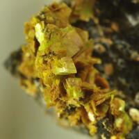 Uranocircite & Smoky Quartz