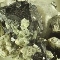 Forsterite & Magnetite