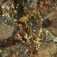 Cacoxenite & Eleonorite & Wavellite