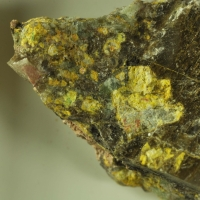 Phoenicochroite