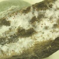 Dickite & Sphalerite