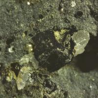 Heliophyllite