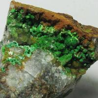 Conichalcite & Olivenite