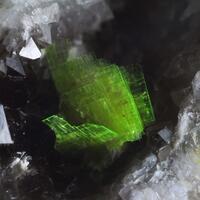 Tin Can Hill Minerals: 05 Jan - 11 Jan 2020