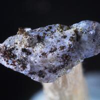 Cuspidine & Rhönite & Gypsum