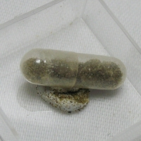 Mcallisterite & Ginorite