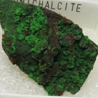 Conichalcite