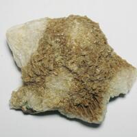 Scolecite
