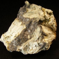 Hastingsite & Magnetite