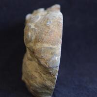 BC Minerals: 07 Mar - 14 Mar 2021