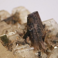Cleavelandite & Tourmaline