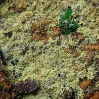 Arsenogoyazite & Barahonaite-(Fe)