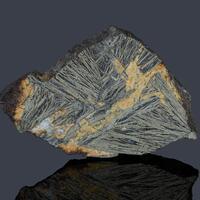 Pyrite Var Feather Pyrite