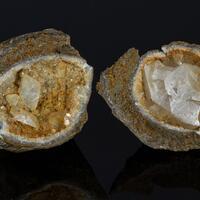 Calcite & Fossil