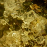 Nepheline Leucite Fluorapatite Augite & Magnetite