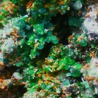 Cuprian Adamite Conichalcite & Zálesíite