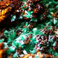 Malachite Cerussite & Cuprite