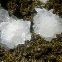 Calcite & Saponite