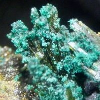 Olivenite Pharmacosiderite & Brochantite