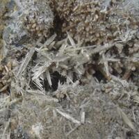 Causeway Minerals: 05 Dec - 12 Dec 2019
