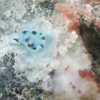Erythrite Rauenthalite & Devilline