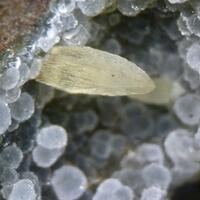 Cowlesite & Calcite
