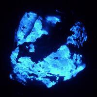 Scheelite & Arsenopyrite
