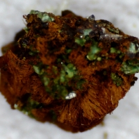 Ianthinite Schoepite & Zeunerite