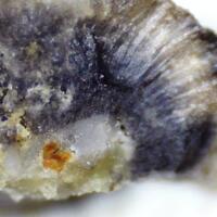 Dzhalindite Indite & Cassiterite