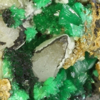 Annabergite Cabrerite Calcite & Gaspéite