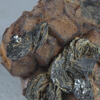 Andradite & Magnetite Psm Hematite
