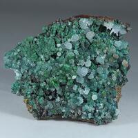 Cuprian Adamite Conichalcite & Aragonite