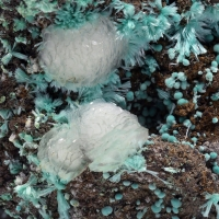 Aurichalcite & Calcite